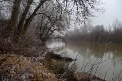 Duna, sziget, tanösvény
