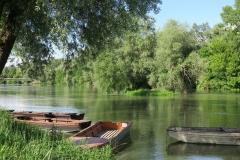 Dunai-ladikok-Mogyorósi-E